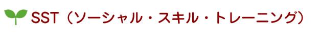 SST(ソーシャル・スキル・トレーニング)