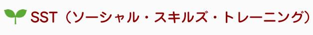 SST(ソーシャル・スキルズ・トレーニング)